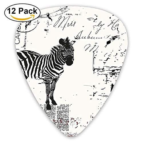 Modernes strukturiertes afrikanisches Safari Animal Zebra auf Retro typografischen Hintergrund-Plektren 12 Pack Für E-Gitarre, Akustikgitarre, Mandoline und Bass