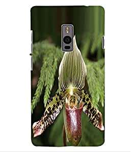 ColourCraft Amazing Creature Design Back Case Cover for OnePlus Two