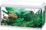 Aquarium complet pour poisson AQUADREAM 80 BLANC LED 90 LITRES