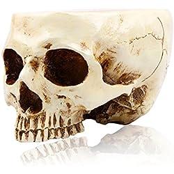 WESTHL 1: 1cráneo Humano Maceta macetas de Almacenamiento, Adorno de Resina decoración del hogar fósiles de Huesos Calavera Flores, Blanco