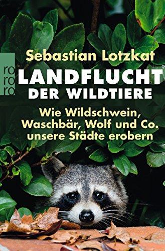 Landflucht der Wildtiere: Wie Wildschwein, Waschbär, Wolf und Co. unsere Städte erobern