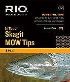 Rio Fliegenfischen InTouch Skagit MOW, Fly Fishing Fly Line, grün, 10' Float Fishing Line, Green
