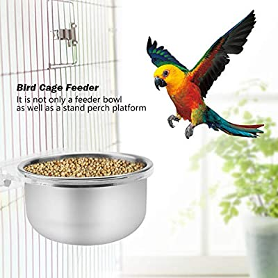 Stainless Steel Hanging Bowl Feeding Dish Feeder with Clamp Holder for Parrot Macaw African Greys Budgies Parakeet Cockatiels Conure Macaw Lovebird Finch by Garosa