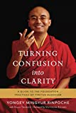 Turning Confusion into Clarity: A Guide to the Foundation Practices of Tibetan Buddhism (English Edition)