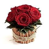 Rosengesteck 6 konservierte Rosen lang haltbar 3 Jahre/Blumengesteck / Bauernhaus/Blumen Deko/Tisch von ROSEMARIE SCHULZ® Heidelberg (Rot)