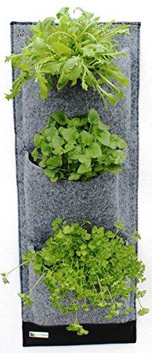PandoTrends Living Wall, Patentierte Pflanzentasche mit Wasserablaufrinne für drinnen und draußen (3)
