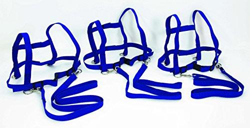 FLIXI Pferdeleine für Kinder im 3er Set - Brustgeschirr mit Sicherheits-Schnell-Verschluss - aus robustem Nylon - in Blau -