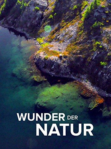 Wunder der Natur (Die Wissenschaft Der Wunder)