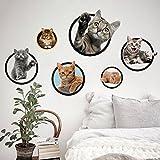 JYSPORT 3D Katzen-Aufkleber Vinyl-Graffiti-Laptop-Gepäck-Fahrrad-Wandbeutel-Wandaufkleber- Toiletten Wandtattoo-Kühlraum-Dekor (6 Cat)