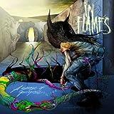 Songtexte von In Flames - A Sense of Purpose