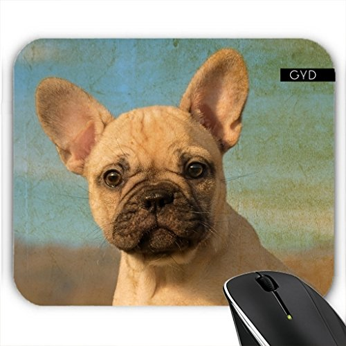 mousepad-cute-french-bulldog-puppy-by-katho-menden
