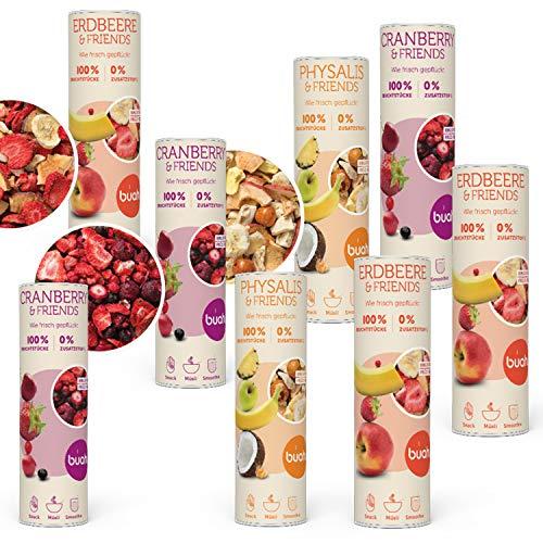 BUAH® Gefriergetrocknet Früchte Gourmet I Probierset I Getrocknete Früchte ohne Zucker I Trockenobst Ungezuckert I 8er Set (23-32g)