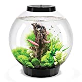 biOrb Classic 30L Aquarium in Schwarz