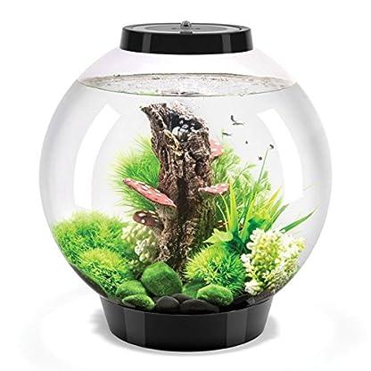 biOrb Classic 30L Aquarium in Black with MCR LED Lighting, Heater Pack & Black Stand 2