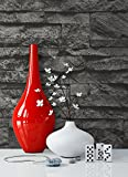 Steintapete Vlies Schwarz | schöne edle Tapete im Steinmauer Design | moderne 3D Optik für Wohnzimmer, Schlafzimmer oder Küche inklusive der Newroom-Tapezier-Profibroschüre mit Tipps für perfekteWände