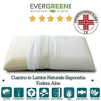 Oreiller latex ergonomique avec housse en tissu Aloe Vera
