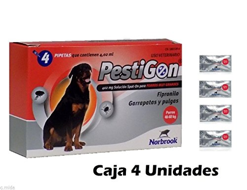 caja-4-pipetas-pestigon-pipetas-anti-pulgasgarrapatas-spot-on-perros-40-60-kg-antipulgas