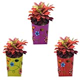 #4: CINAGRO - Pack 3 Designed Wall Hanging Planter, Plant holder - Purple, Red, Green color