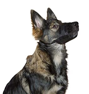 Kerbl Chien Muselière Nylon 22-30 cm Noir