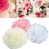 FullBerg 15er Seidenpapier Pompoms Deko Papierblume Set für Hochzeit babyparty Gartenparty Wedding als kinderzimmer Deko - weiß Rosa Elfenbein Gelb (9pcs*30cm/6pcs*25cm)