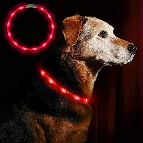 Anicoll LED Leuchthalsband Hunde Halsband USB wiederaufladbar - Längenverstellbarer Haustier Sicherheit Kragen für Hunde und Katzen- 3 Modus 12 Lichte (rot)