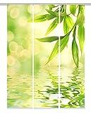 Home Fashion Digitaldruck Schiebevorhang Stoff grün 60 cm x 245 cm 3-Einheiten