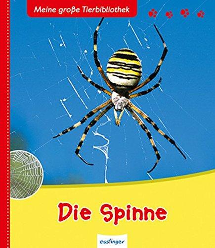 die-spinne-meine-grosse-tierbibliothek