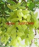Pinkdose 100% real Goldfinger frisches grüne Trauben aus biologischem Anbau, Profi-Paket, 20 / bag, Hardy köstliches Obst und Gemüse