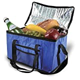 Parkland (Extra Large 26L borsa frigo portatile pranzo Box cibo e bevande da campeggio picnic Festival ghiaccio