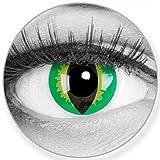 Lenti a contatto colorate annuali lenti a contatto Meralens 1 occhi di gatto verde Crazy Fun Green Dragon. Top quality to carnival carnival Halloween con lenti a contatto contenitore senza forza
