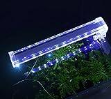 Cristallo faro pesci acquario luci dell'acquario LED piccola lampada clip di luce mini di pesce per il risparmio energetico luci della clip serbatoio , d30 long 28.5cm