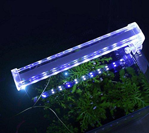 cristallo-faro-pesci-acquario-luci-dellacquario-led-piccola-lampada-clip-di-luce-mini-di-pesce-per-i