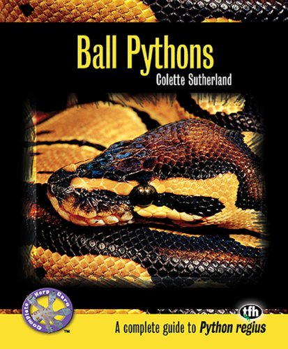 Ball Pythons (Complete Guide)