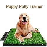 Allright Welpentoilette Hundetoilette Hunde Training Rasenmatte für Kleine Hunde WC Toilette neu 63 x 51 x 7cm