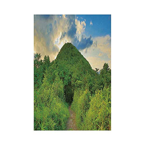 Liumiang Eco-Friendly Manual Custom Garden Flag Demonstration Flag Game Flag,Nature,Mountain Path Covered by Trees Foliage Bushes Highland Woodland Landscape,Fern Green Sky Bluee décor