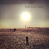 Far and Wide (feat. Pedro Grey)