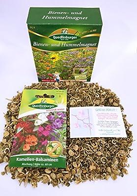 Premium Bienen und Hummelmagnet inkl. 1 Pkg. Kamelien-Balsaminen kostenlos - Blumenwiese von Quedlinburger bei Du und dein Garten