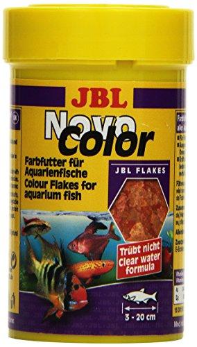 JBL NovoColor 30156 Alleinfutter für farbenprächtige Aquarienfische, Flocken 100 ml