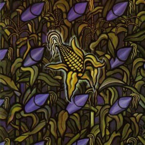 Against the Grain [Vinyl LP]