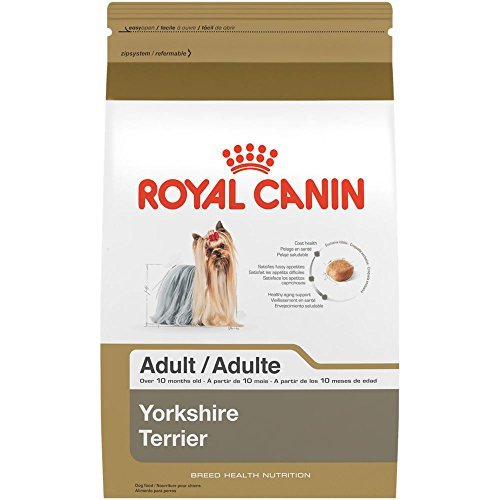 ROYAL CANIN BREED HEALTH NUTRITION Yorkshire Terrier Adult dry dog food, 2.5-Pound by Royal Canin