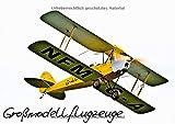 Großflugzeugmodelle (Posterbuch DIN A2 quer): Dreizehn faszinierende Flugzeugmodelle als Nachbauten historischer und aktueller Vorbilder im Flug ... ... [Papeterie] [Feb 03, 2013] Selig, Bernd