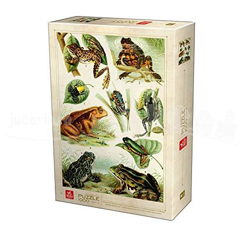 Deico Games Puzzle 75703/EN 01 - Puzzle (1000 Piezas), diseño de Ranas