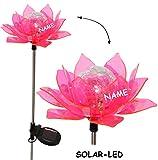"""Solar Leuchte - """" Blume & Blüte - PINK """" - incl. Name - Solarblume mit LED Licht - Garten Wetterfest für Außen - Figur & Gartendeko Solarleuchte Solarbetrieben - Laterne Gartenleuchte Außenbeleuchtung - Solarleuchten Dekofigur / photovoltaik - Lampe / Gartendeko - Seerose"""