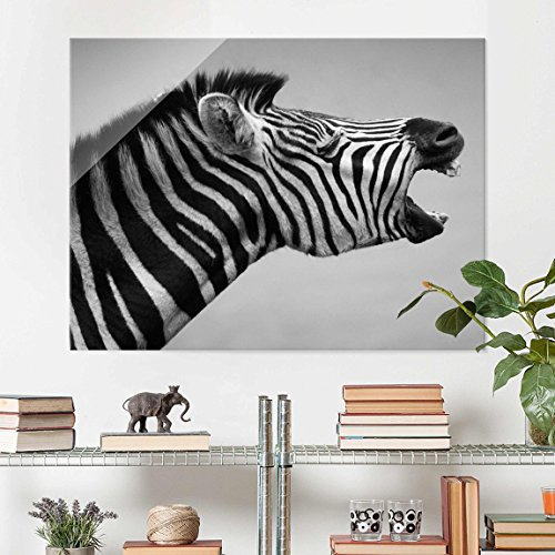 impression-sur-verre-rawling-zebra-ii-large-34-image-sur-verre-tableau-en-verre-tableau-mural-deco-m