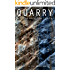 Quarry: Book 1 of the Quarry Series (English Edition)