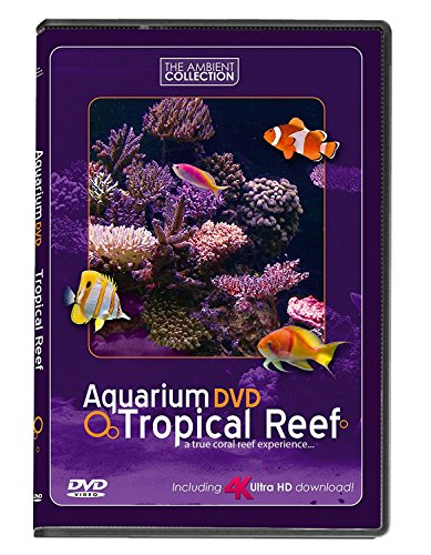 aquarium-dvd-tropical-reef-with-4k-ultra-hd-download-in-natural-sound-and-relaxing-music