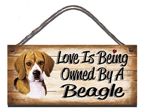 Gigglewick Gifts Geburtstag Anlass Beagle 'Holz-Wandschild, mit englischsprachiger Aufschrift Love is Being Owned by A Beagle