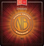 D 'Addario nbm1140 11–40 Medium Nickel Bronze Mandoline Saiten