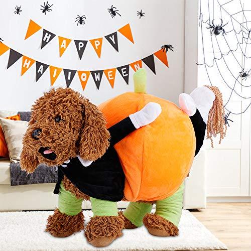 Haustier Hundekleidung Lustiges Comic Kürbis Kostüm Outfit Hautfreundlich für Halloween Weihnachten, weich(XS)