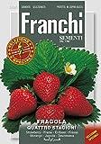 FRAGOLA 4 STAGIONI